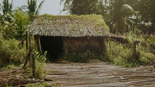 A hut with a straw roof in Jamaica